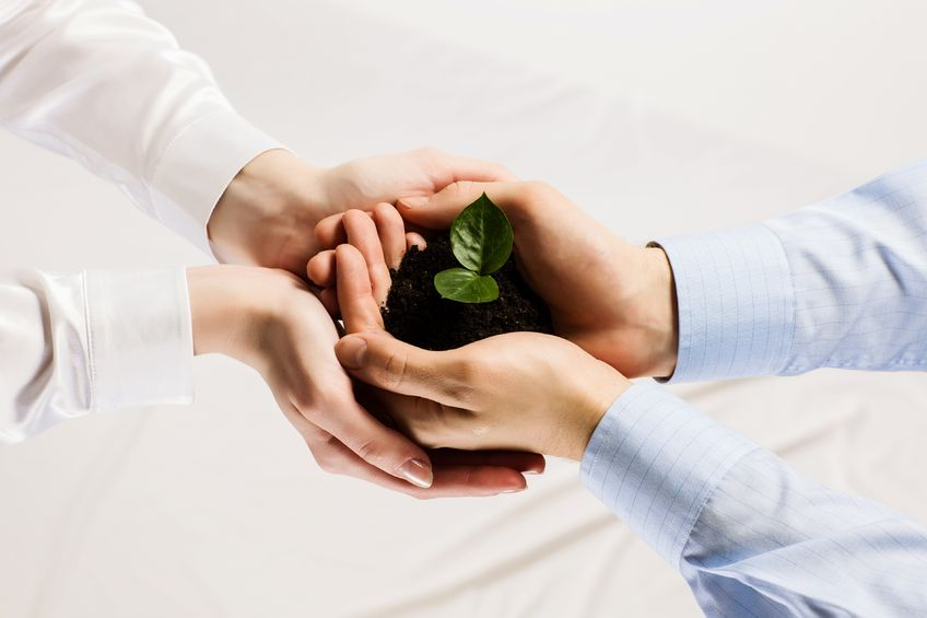 21322991-close-up-of-businessmen-hands-with-sprout-in-palms